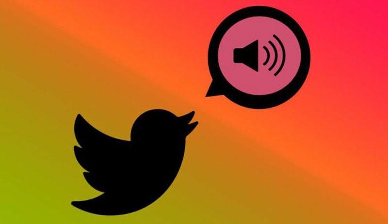 Twitter'da 'sesli tweet' özeliiği nasıl aktif olur
